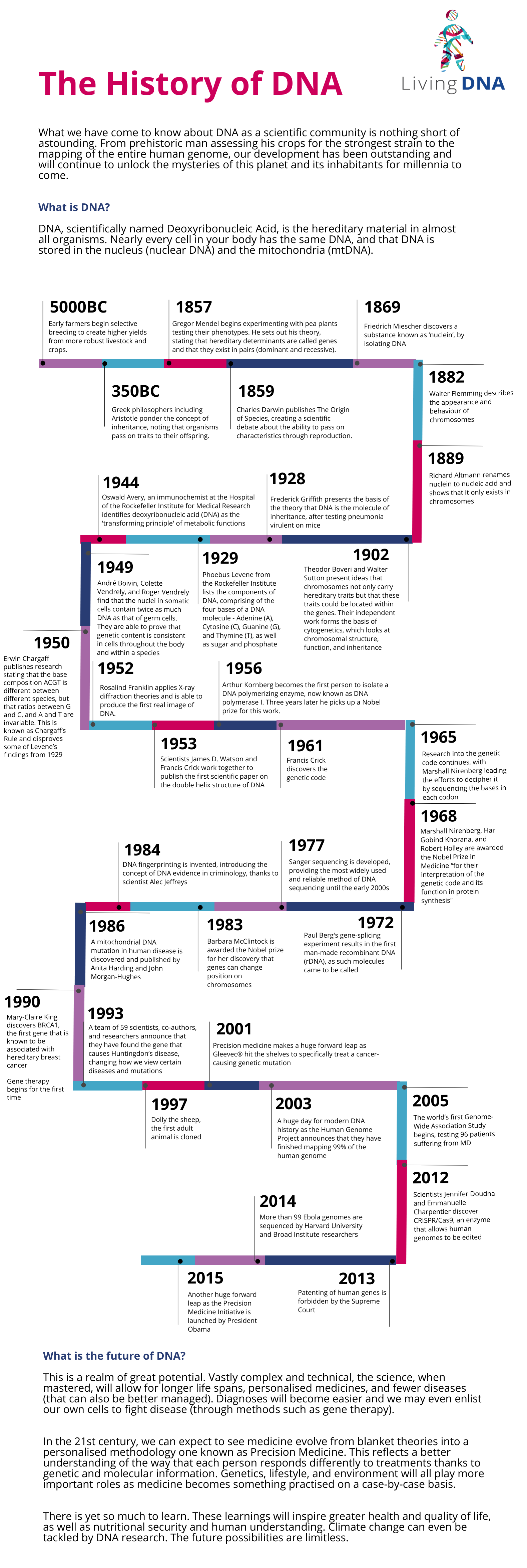 The History of DNA Timeline